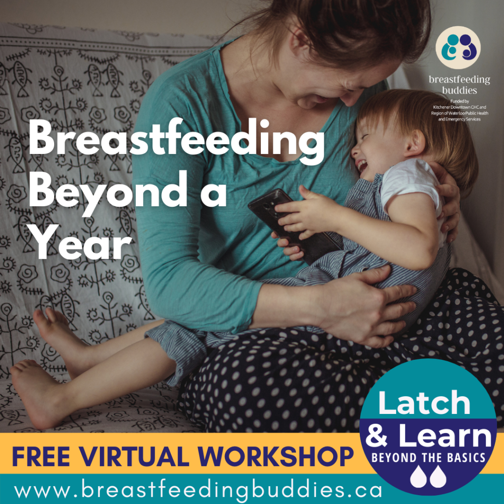 Parent Breastfeeding Toddler